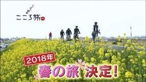 春の旅 (2).jpg